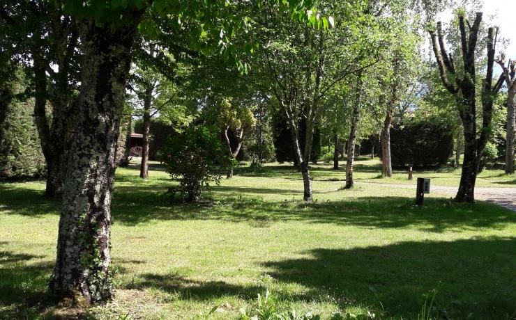 Camping Le rêve - Vaste emplacement herbeux