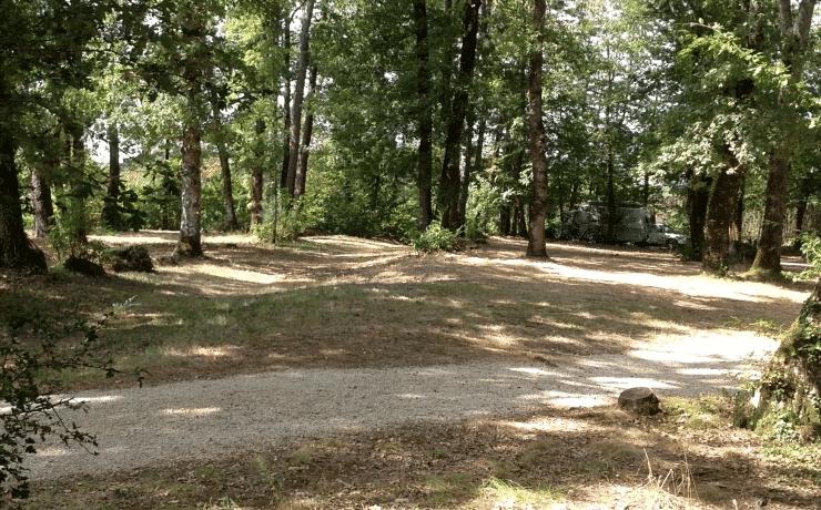 Camping Le Rêve - Emplacement boisé