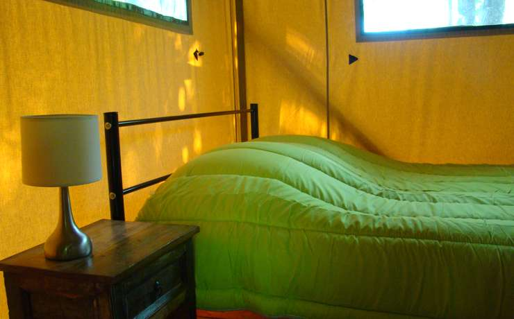 Glamping lodgetent  - Lodge tent bedroom