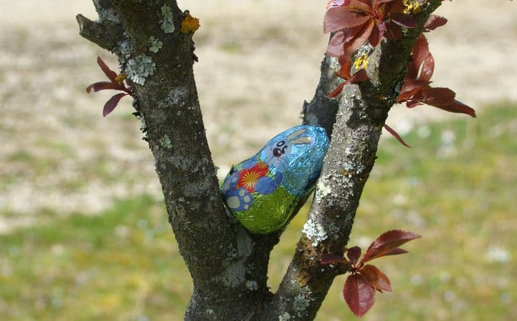 Camping Le Rêve - Profitez de Pâques en famille autour d'une chasse aux oeufs