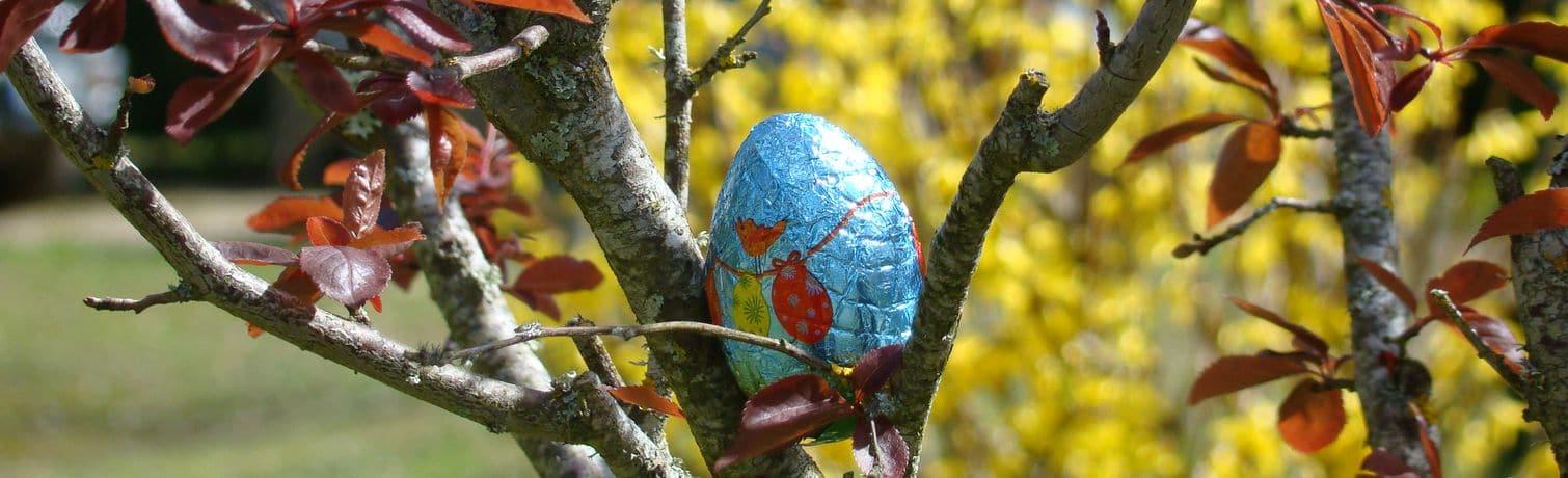 Camping Le Rêve - Chasse aux oeufs de Pâques