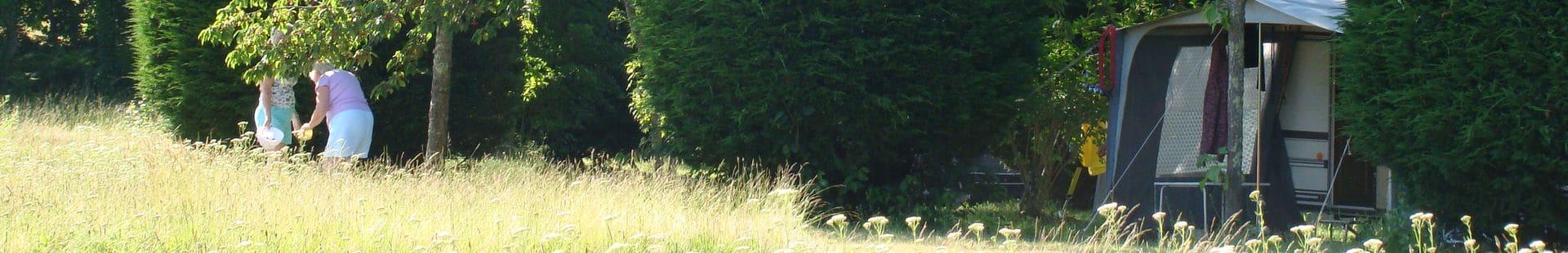 Camping Le Rêve - Kersen plukken