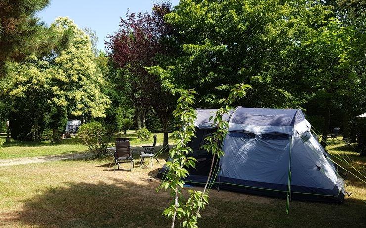 Camping Le Rêve - Symbiose tussen bomen