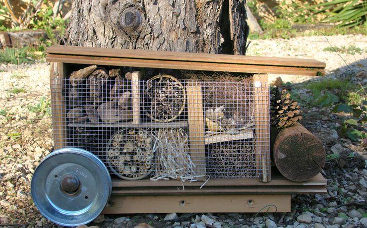 Camping écologique - Le Rêve - Caravane à insectes